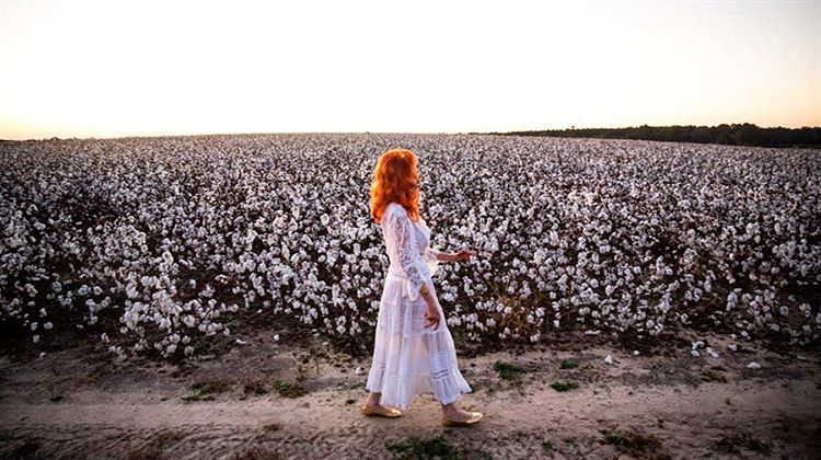 kaitlyn tempest cotton fields